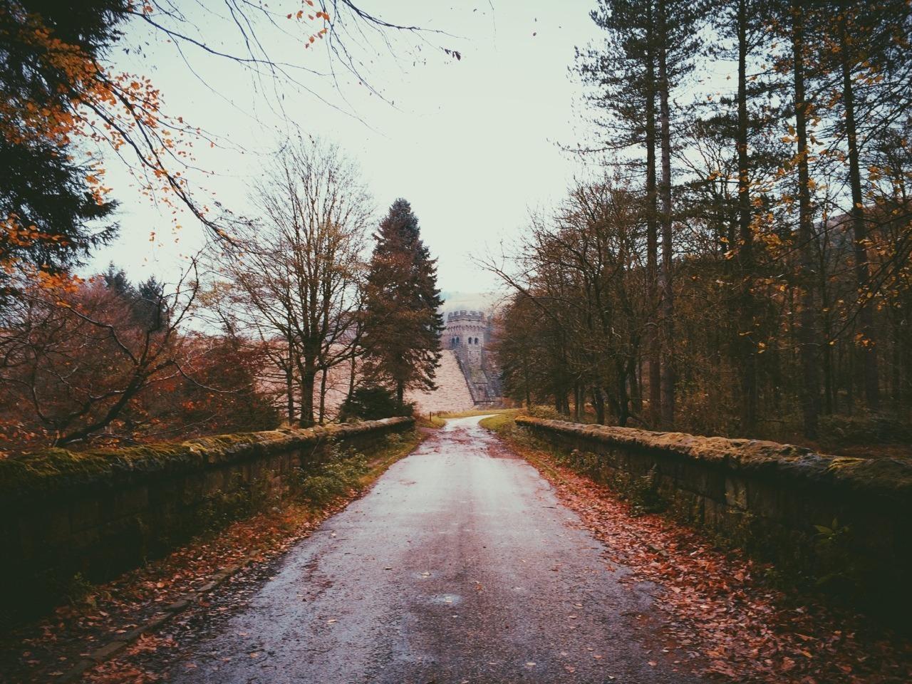 autumn posts