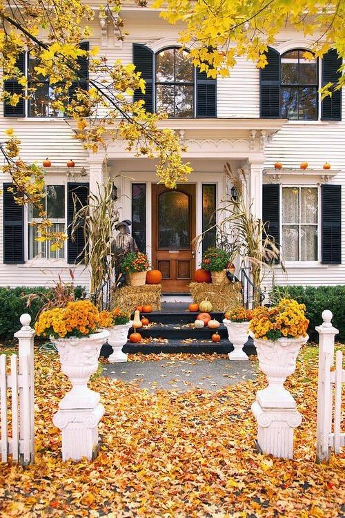 inspo autumn